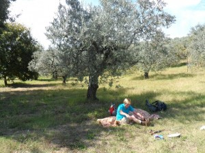 Assisi-Rome 2014 (842)